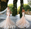 Real Champagne Wedding Dress Lace Tulle Mermaid Pink Wedding Gowns