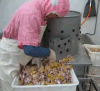 Chicken Gizzard Peeling Machine for Chicken Slaughtering