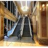 Indoor Outdoor Commercial Heavy Duty Vvvf Escalator
