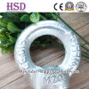 E. Galvanized DIN582 Eye Nut of Rigging Hardware