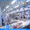 1000 Pigs Slaughter Line Equipments