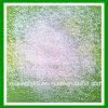 Supply of Caprolactam Grade, Agriculture Ammonium Sulfate Fertilizer
