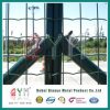 PVC Coated Holland Wire Mesh Fence/Wire Mesh Euro Fence