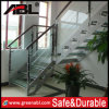 High Quality Modern Design Staircase (DD004)