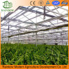 Economical Drip Irrigation System for Greenhouse