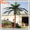 China Supplier Outdoor Decoration Artificial Coconut Tree