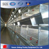 Poultry Cage for Bif Poultry Farm / Poultry Battery Cage