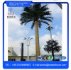 Disguised Monopole Palm Tree Telecom Antenna Tower