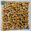 Qrd Wooden Diffuser (QRD D6W)