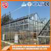 Agriculture Stainless Steel PC Sheet Greenhouse for Flower