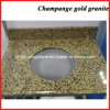Champange Gold Yellow Granite Vanity Top