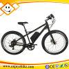 48V MTB Beach Cruiser E-Bike E-Bicycle Electric Bicycle (PE-TDE12Z)