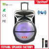 Feiyang 18inch Outdoor Portable Speaker Cx-18d