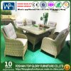 Wicker Furniture Rattan Dining Sets Wicker Set Table with Glass Top (TG-HL28)