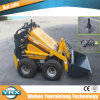 Mini Skid Steers Most Popular in China