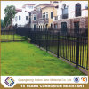 Any Color Iron or Aluminum Garden Fence