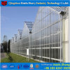 China Factory High Quality PC Sheet Greenhouse for Tomato