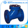 Cl300, Cl600, ASME 16.34 Ductile Iron and Stainless Steel Check Valves with Flange End