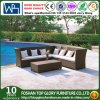 Modern Outdoor Rattan/Wicker Sofa Sets, Rattan Sofa Furniture, Rattan Sofa (TG-JW60)