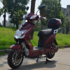 for Turkey Market 500 Watt Electric Scooter
