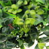 Outdoor Artificial Hedge Interlocking Artificial Leaf Fence
