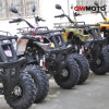 150CC/200CC/250CC ATV Quad Bike CE