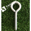 Stainless Steel Coach Eyes Hook