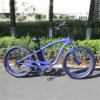 48V 500W Beach Ebike Fat Tire E Bike