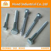 Stainless Steel 304/316 M6X30 DIN571 Coach Screw