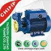 Chimp Electric 1HP Clean Water Pump