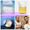 CAS 15262-86-9 Muscle Building Adrenocortical Hormone Test ISO/Testosterone Isocaproate