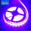 Waterproof 5050 RGB LED Strip