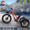Alloy Fram Bike 3 Wheel Bicycle Fat Tire Electric Tricycle