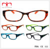 Hot Sales Plastic Reading Glasses with Camouflage Hot Stamp Transfer (WRP411413)