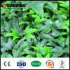 Plastic Garden Fence Artificial Boxwood Tiles Fake Plants