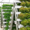 Vegetable Greenhouse Hydroponics Tower