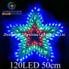 Animated 50cm Star Christmas Motif Lights