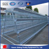Poultry Farming Equipment Broiler Cage 3/4/5 Tiers