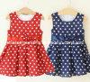 Lovely Evening Dress for Girl, Kids Dress