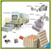 Full Automatic Paper Egg Carton Making Machine