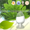 Factory Supply Tea Polyphenols with Max Purity 98%