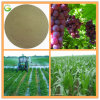 Plant and Animal Source Amino Acid Powder 100% Soluble