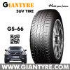 PCR Tire/Passenger Car Tire/Radial Tyre (GS-66)