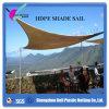 Shade Sail 3