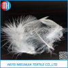 China Factory Wholesale Cheap Duck Down Feather