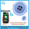 Round Mini LED Ceiling Light with Wireless Bluetooth Speaker