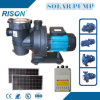 New Solar Water Pump for Swimming Pool