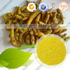 Price Curcumin 98% Powder