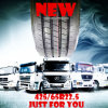 425/65r22.5 Steer Tyre Drive Tyre Wide Single Truck Tyre