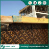 18mm Plywood Board for Construction Purpose